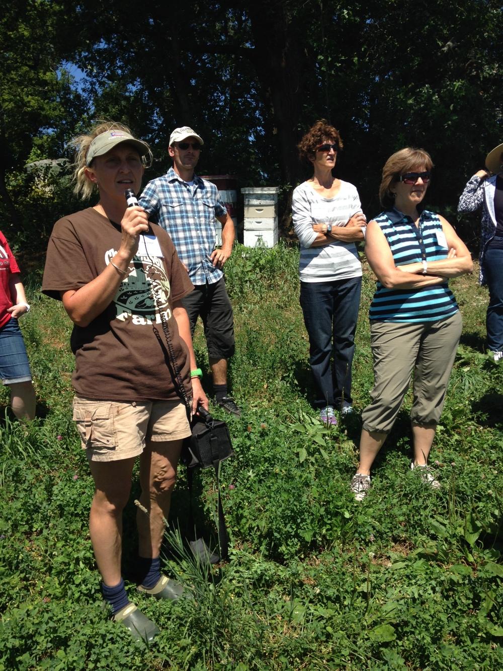 farm tour bees